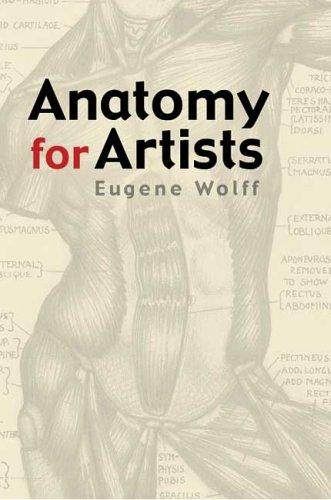 Download Anatomy for artists