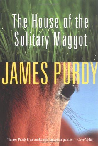 Download The House of the Solitary Maggot